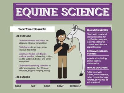 Equine Science Inforgraphic